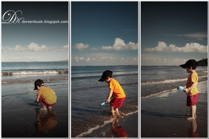 20120210_Browns Bay 021
