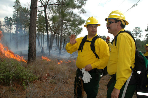 National Fire Operations Manager Fouad Assali, left, of the Moroccan High Commission and Driss Misbah, a regional forester in northern Morocco observe a prescribed burn on the Ocala National Forest. Photo Credit: Susan Blake, Public Affairs Specialist, National Forests in FloridaNational Fire Operations Manager Fouad Assali, left, of the Moroccan High Commission and Driss Misbah, a regional forester in northern Morocco observe a prescribed burn on the Ocala National Forest. Photo Credit: Susan Blake, Public Affairs Specialist, National Forests in Florida