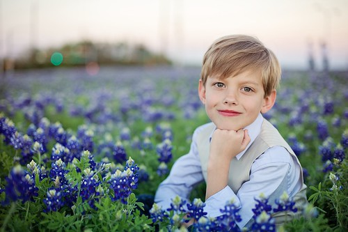 texas explore baxter wildflower bluebonnets 50mmf14d florabellaactions