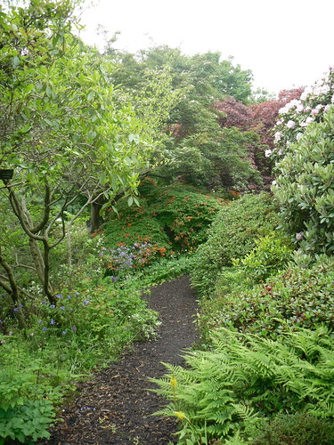 Pathway in Branklyn Gardens,Perth