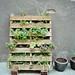 urban gardening by BLINKBLINK*
