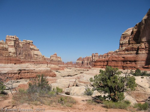 Looking back down the canyon, away from Druid Arch, Canyonlands National Park, Needles District, Utah