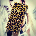 Fierce iPhone 4s case