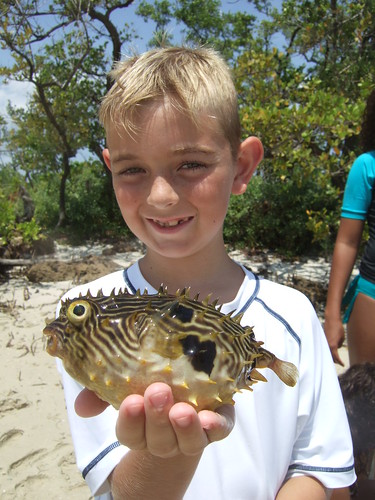 Eric with a striped burrfish | by AdventureMIke.com