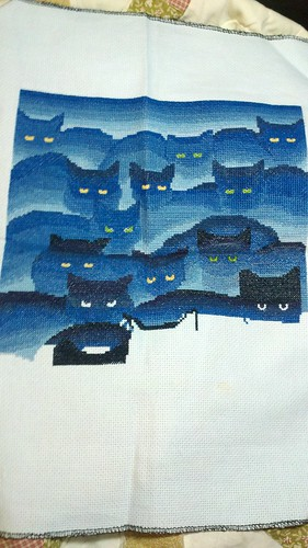Smoky Mountain Cats as of 7-14-12