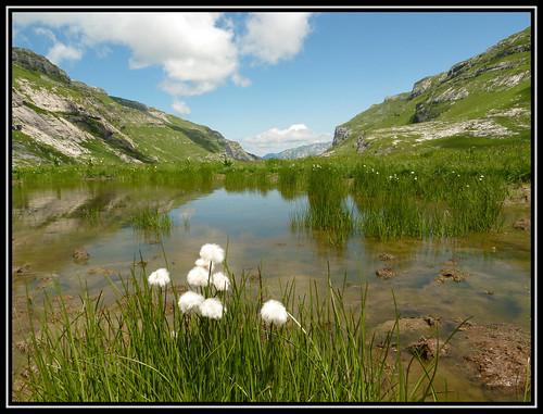 Les Laouchets - the lakes above Refuge de Sales
