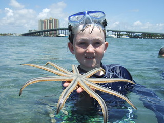 Spencer finds a cool 9 armed starfish!