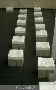 富貴牡丹-0006