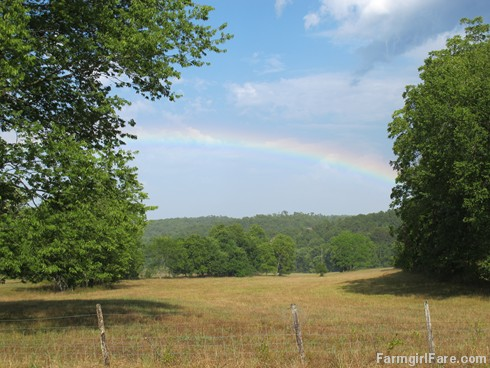 (21-1) Rainbow in the hayfield after a brief rain Sunday afternoon - FarmgirlFare.com