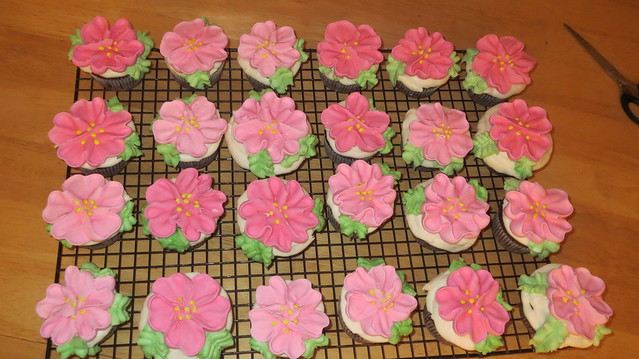 24 cup cakes