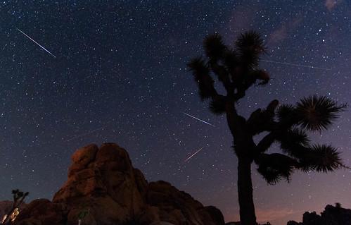 Les principaux essaims d'étoiles filantes de l'été