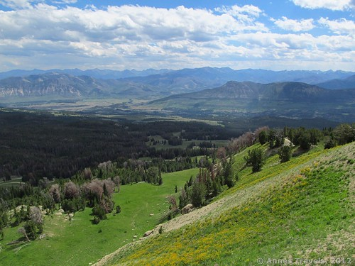 The view to the south from Clay Butte Lookout, Shoshone National Forest, Wyoming