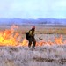 Prescribed Fire for Sagebrush Habitat Restoration