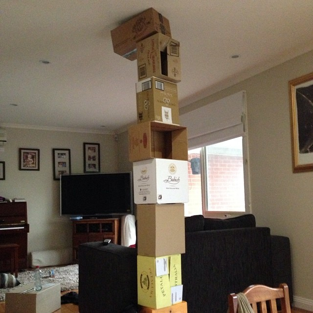 What the kids do with the boxes we've gathered for renovation packing. Helpful.