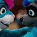 Biggest Little Fur Con 2016 - Day 3