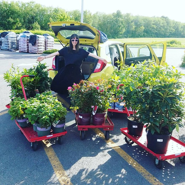 I don't know, do you think we got enough plants? Even better we fit them all in to our tiny car. ???