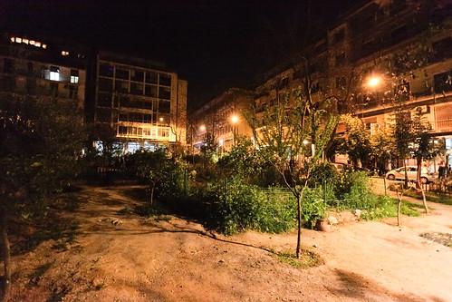 The Community Park