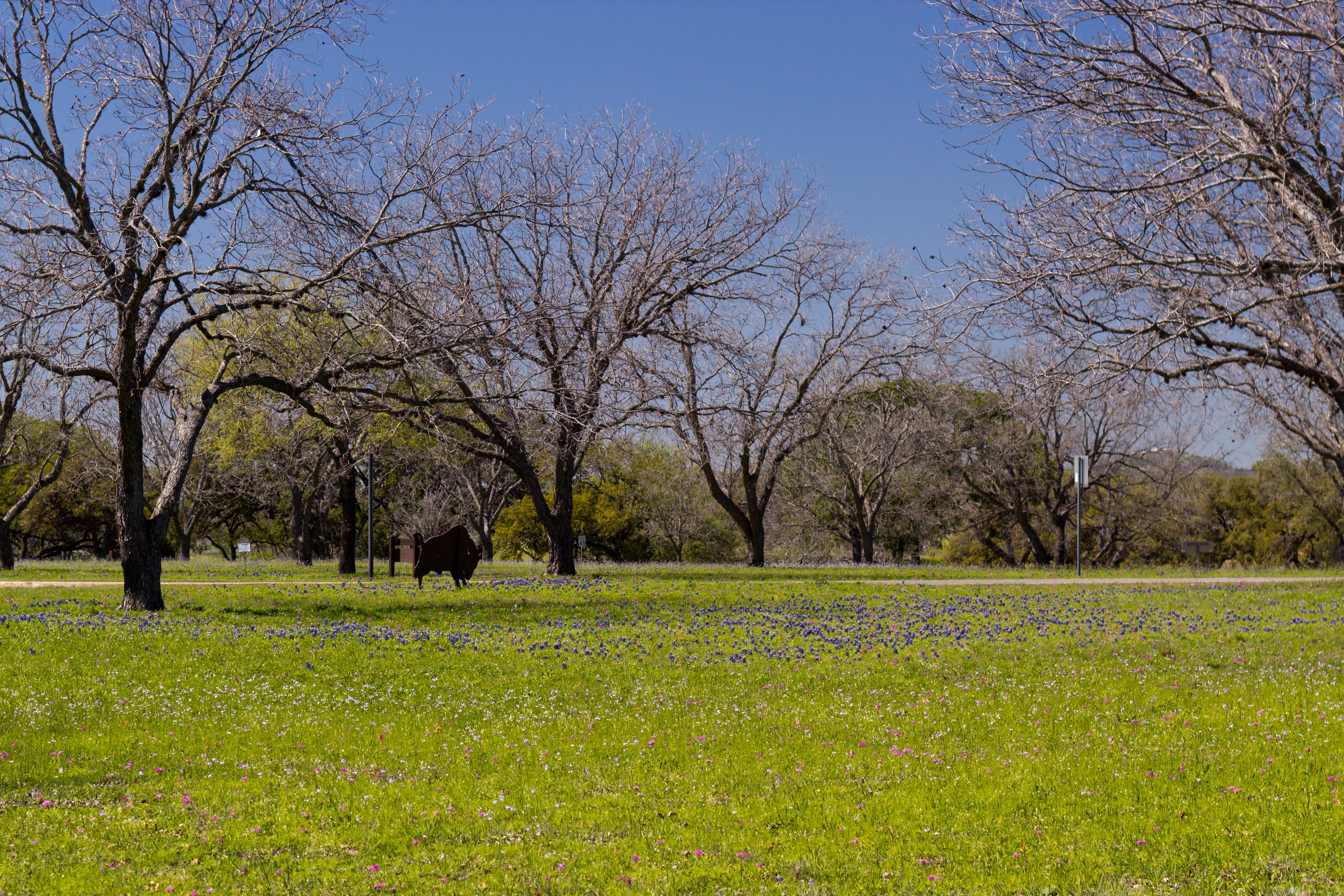 """LBJ Ranch - """"The Texas White House"""""""