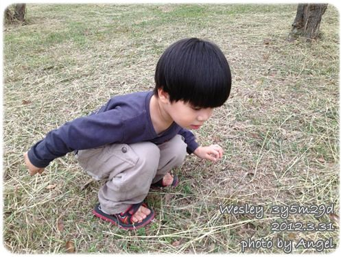 120331-草地上的小鬼