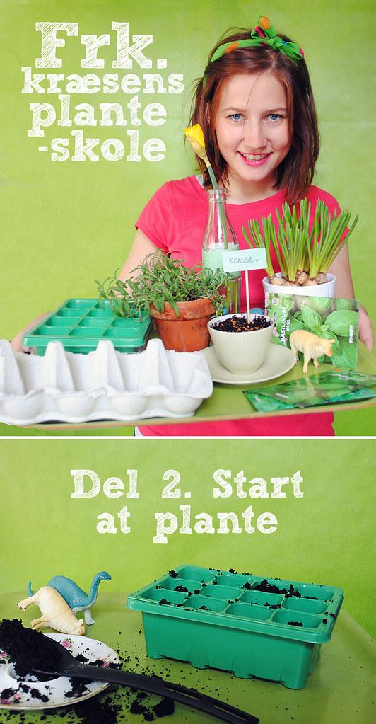 Del 2: Start at plante