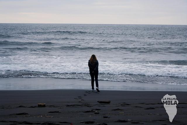 Nogales Sea
