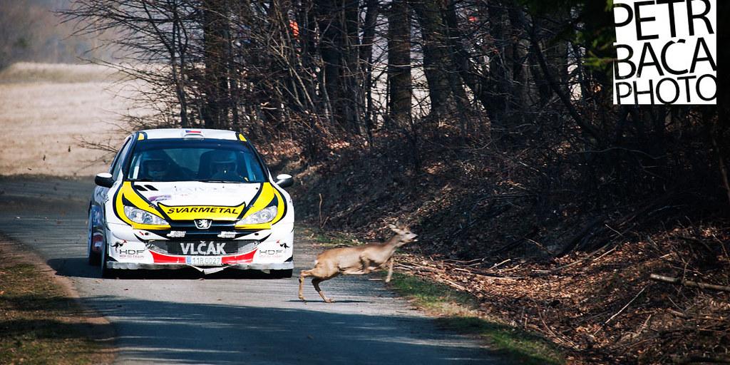 Vlček-Lasevič, Peugeot 206 Kit Car