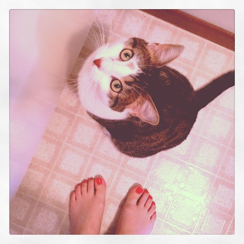 kitty at my feet.