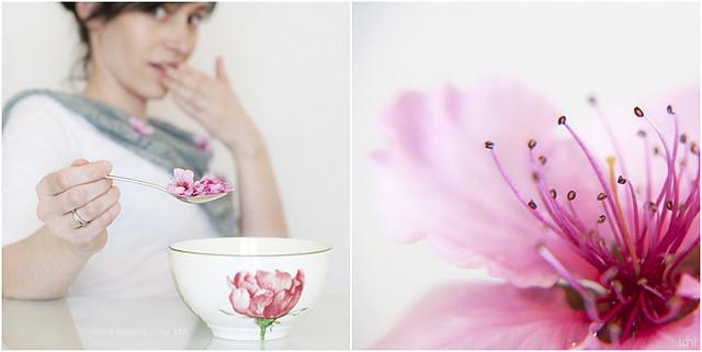 diptic flors