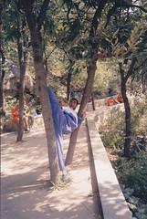 Sun, 06/11/2011 - 09:35 - Shaolin Kung Fu training in India