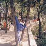 Sun, 06/11/2011 - 09:35 - Shaolin Kung Fu training in India
