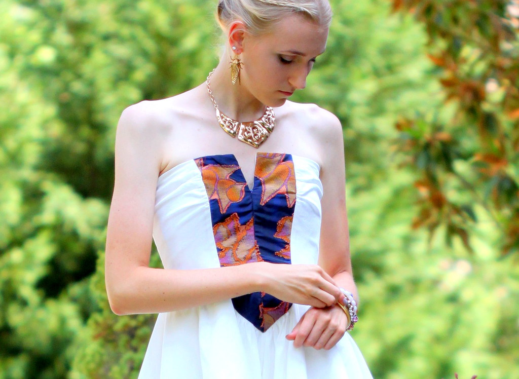 Swan Princess5