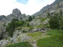 Depuis la fin de l'Andadonna : la montée vers les bergeries de Scaffone