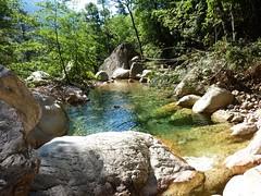 Remontée du Carciara : la vasque à l'entrée du canyon