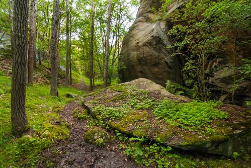 Big rock path by Brintam