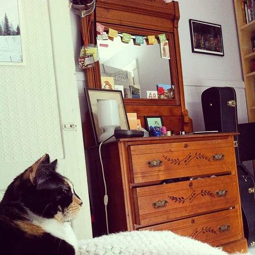 it's small, but she and the cat, like it fine #interiors #home #teen #spaces #diy #thisoldhouse