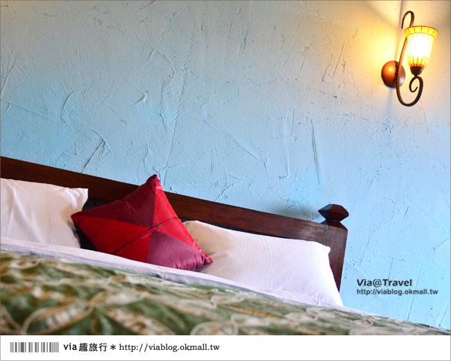 【台東民宿】台東願井民宿~在藍天下遇到南法風的浪漫莊園36