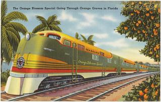 The Orange Blossom Special going through orange groves in Florida