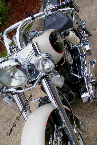 Harley Davidson Soft Tail