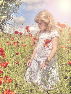 Ellie amongst the poppies