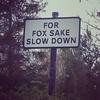 For Fox sake...
