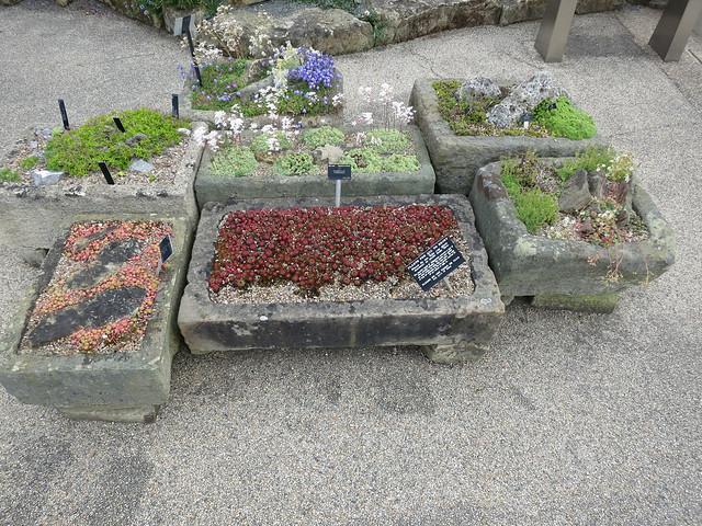 Каменная ванна для цветов