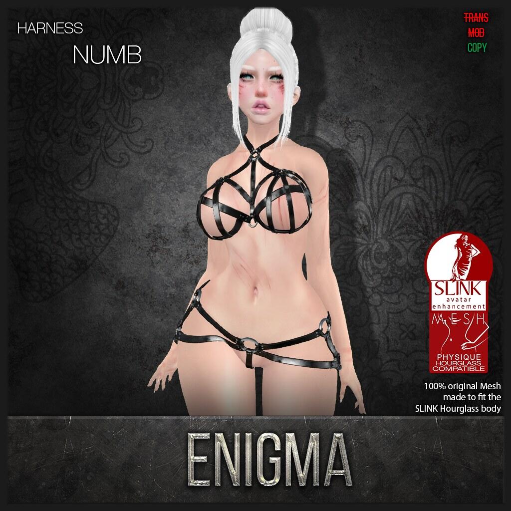 :E: Numb