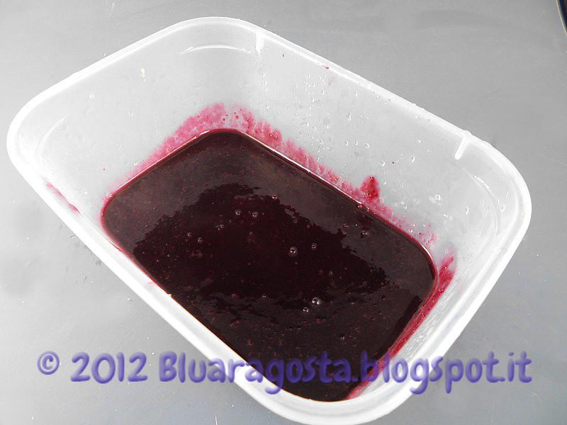 02-gelatina di mirtilli