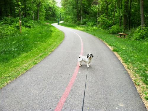 USI-Burdette Trail