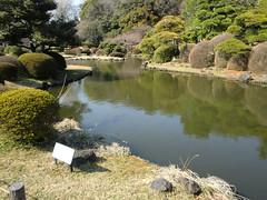 20120328小石川植物園-111