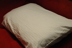 duvet cover(0.0), furniture(0.0), mattress pad(0.0), bed sheet(0.0), bed(0.0), textile(1.0), pillow(1.0),