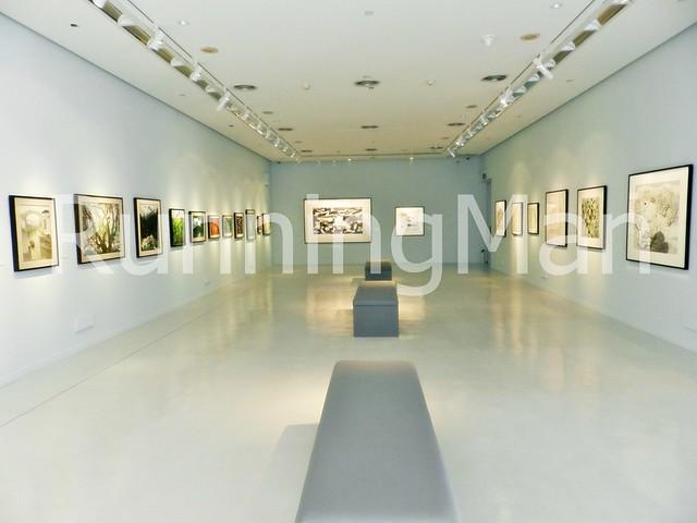 Singapore Art Museum 08