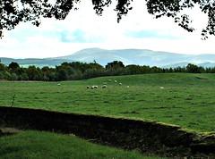St John's Kirk burial ground, Lanarkshire, Scotland