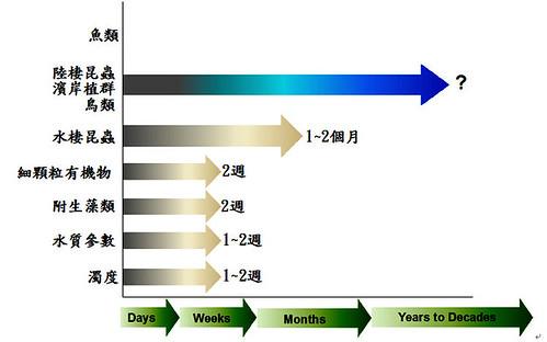 圖一、七家灣溪一號防砂壩壩體改善工程後,生物與非生物因子恢復時間軸