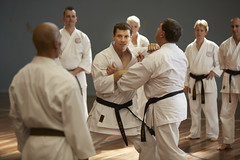 tang soo do(0.0), individual sports(1.0), contact sport(1.0), sports(1.0), combat sport(1.0), martial arts(1.0), karate(1.0), taekkyeon(1.0), japanese martial arts(1.0), shorinji kempo(1.0),